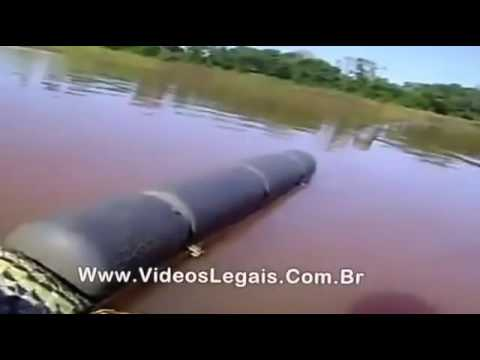 01Clip hít KINH HOÀNG RẮN KHỔNG LỒ ĂN THỊT NGƯỜI TRONG RỪNG AMAZON BRAZIL 2016 video giải trí vui cư