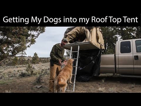 Cascadia Vehicle Tents (CVT) | Roof Top Tent | Getting Dogs In and Out