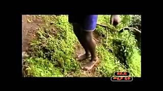 Tigabe Zerihun - Hode Abeba ሆዴ ኣበባ (Amharic)