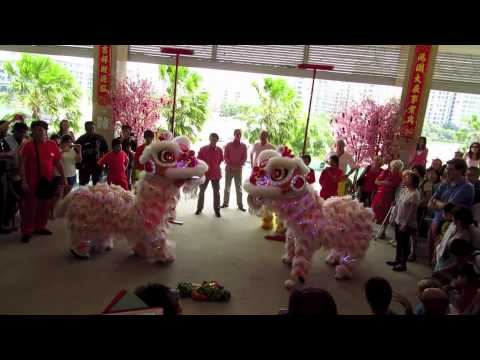 A Singapore Lion Dance, Chinese New Year 2014