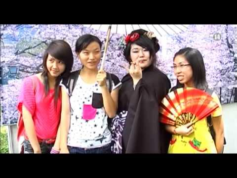 VTC14_Tổ chức thường niên Lễ hội Hoa Anh đào tại Hạ Long