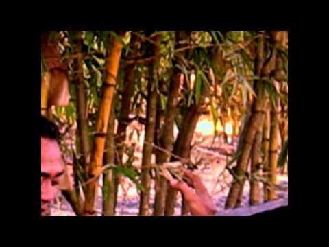 Penampakan & Penarikan Mistis Batu Duri Bulan (Home Made Movie)