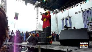 Capleton Live At Rebel Salute 2014