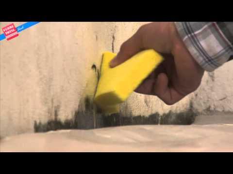 Ferretotal c mo eliminar moho en las paredes youtube - Como eliminar el moho ...