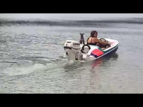 Mini boat addictor 30hp evinrude etec 2014