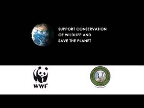 wwf anti poaching tv ad march 2014