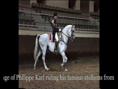 Exclusive interview regarding modern competition dressage youtube