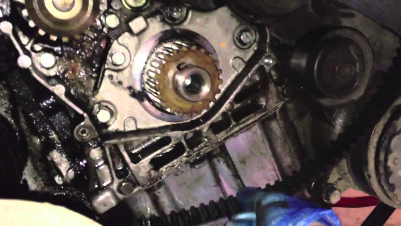 Peugeot 406 Timing Belt Change Youtube