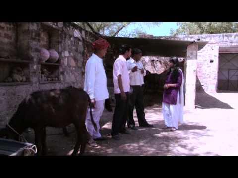 Vedanta - Agriculture & Livestock Development Program