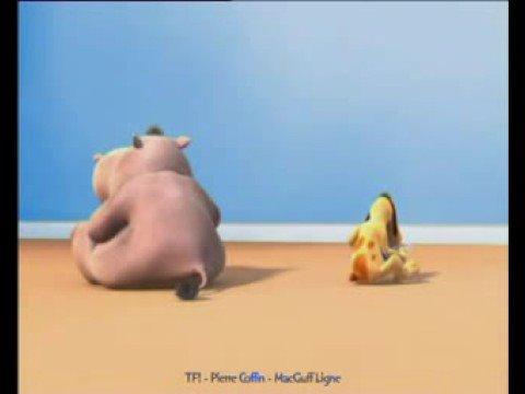 Hipopotamo da peidos