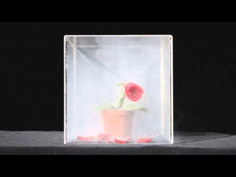 2013「無菸生活」設計大賞銅獎主題:花