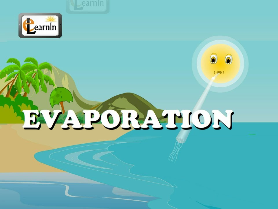 Displaying (19) Gallery Images For Evaporation For Kids...