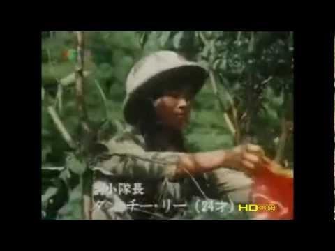 Việt Nam Tuyến Lửa (Nhật Bản SX) - Phim Xúc Động Nhất Về DQ-TNXP
