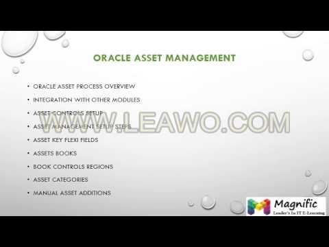 Oracle apps financial online training in Australia