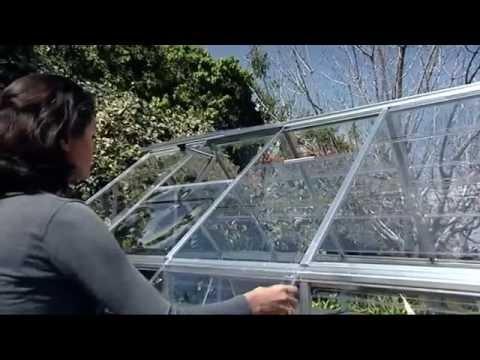 Palram Harmony Greenhouse 6X4