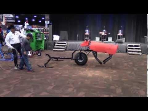 time machine team roping
