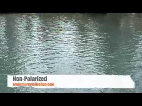 oakley holbrook polarized vs non polarized