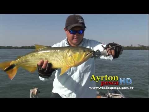AYRTON PESCA FISH TV PESCA DO DOURADO-ARREMESSO-ISCA ARTIFICIAL-RAPALA-YOU TUBE