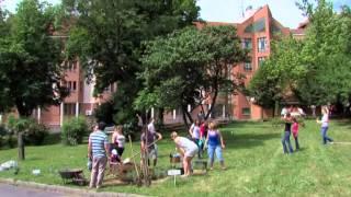 Az Egészség Kapujában: Kertszépítő Piknik a Szül. és Nőgyógyászati Klinikán