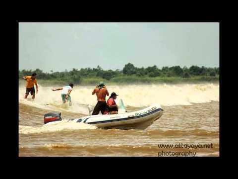 Selancar Ombak Bono Kampar - Bono Waves Kampar River Surfing