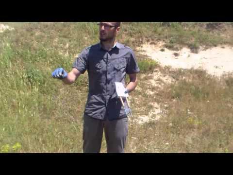 Gladiatör Alan Tarama Cihazı / 60 cm. derinlik testi.