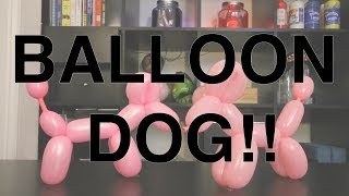 How To Tie: Balloon Animal Dog!!