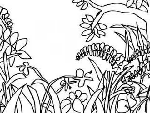 drawing a jungle scene youtube