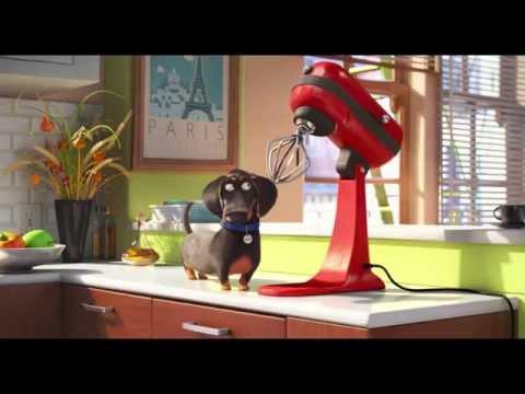 Tajný život miláčikov - trailer na rozprávku