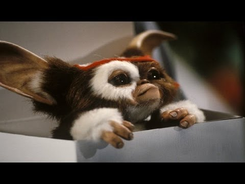 Columbus Returning For New GREMLINS & GOONIES Films - AMC Movie News