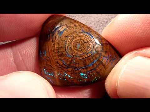 Drvo ili dragi kamen?
