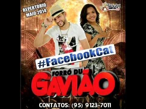Forró Du Gavião-FACEBOOKCAT - Repertorio Maio  2014