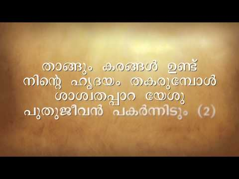 Thangum Karangal Undu - Instrumental - Malayalam Christian Song