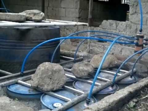Bio Gas - using bio-gas from dirt , help to prevent climate changes . philippines