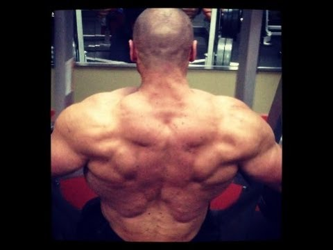HEAVY ASS SHREDDED BACK TRAINING with Bro Fitness and Cellucor!