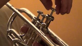 Aceitar los émbolos o válvulas de una trompeta