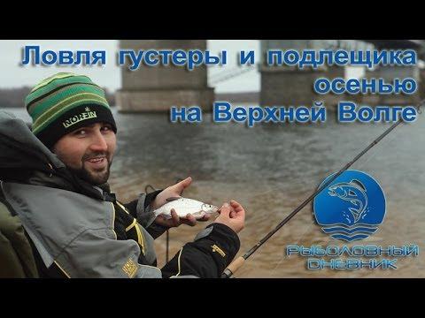 осенняя ловля густеры и подлещика на фидер видео : РД