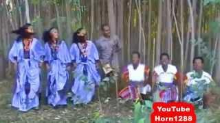 Wagnew Ashenafi - Erilum እሪኩም (Amharic)