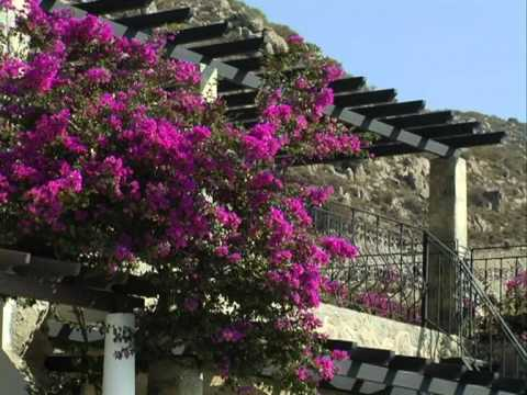 Bodrum - Turkey (  English & Turkish )