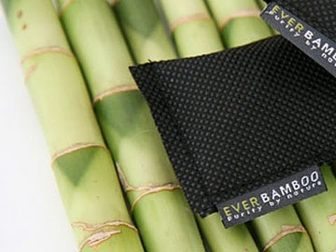 Ever Bamboo  - Natural Charcoal Deodorizer