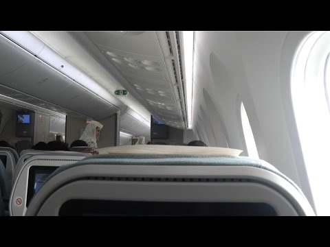 787-800 Dreamliner Royal Brunei Airlines, Singapore to Bandar Seri Bagawan