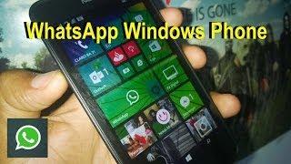Novo WhatsApp Windows Phone!