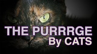 [ THE PURRRGE] Video