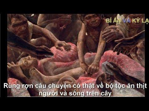 Rùng rợn câu chuyện có thật về bộ tộc ăn thịt người và sống trên cây - Được ghi lại bằng camera.