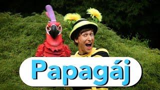 Smejko a tanculienka - Papag�j