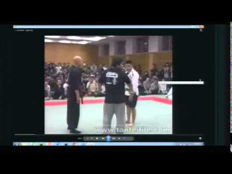 Fighting the Fakers: Woo in Martial Arts Panel TAM 2013
