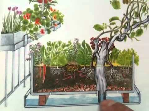 miniature urban permaculture balcony design youtube