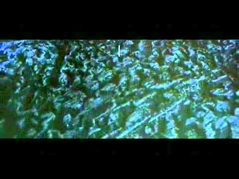 Quái Vật Không Gian - Alien 3 1992 - phim kinh dị full hd