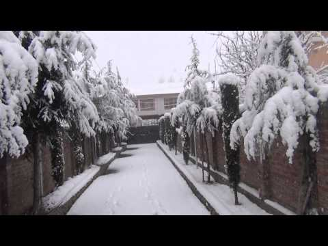Fresh Snowfall welcomes 2014 in Kashmir valley (II)