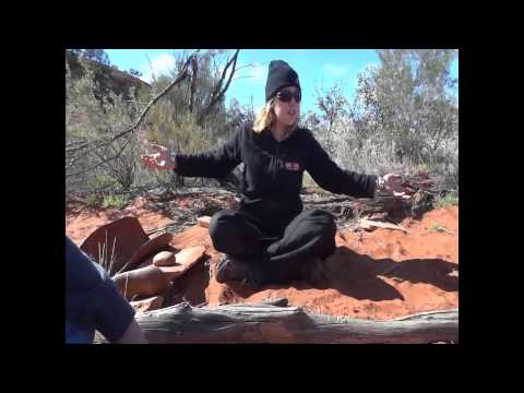 Study of Aboriginal Life - Australia Day 12