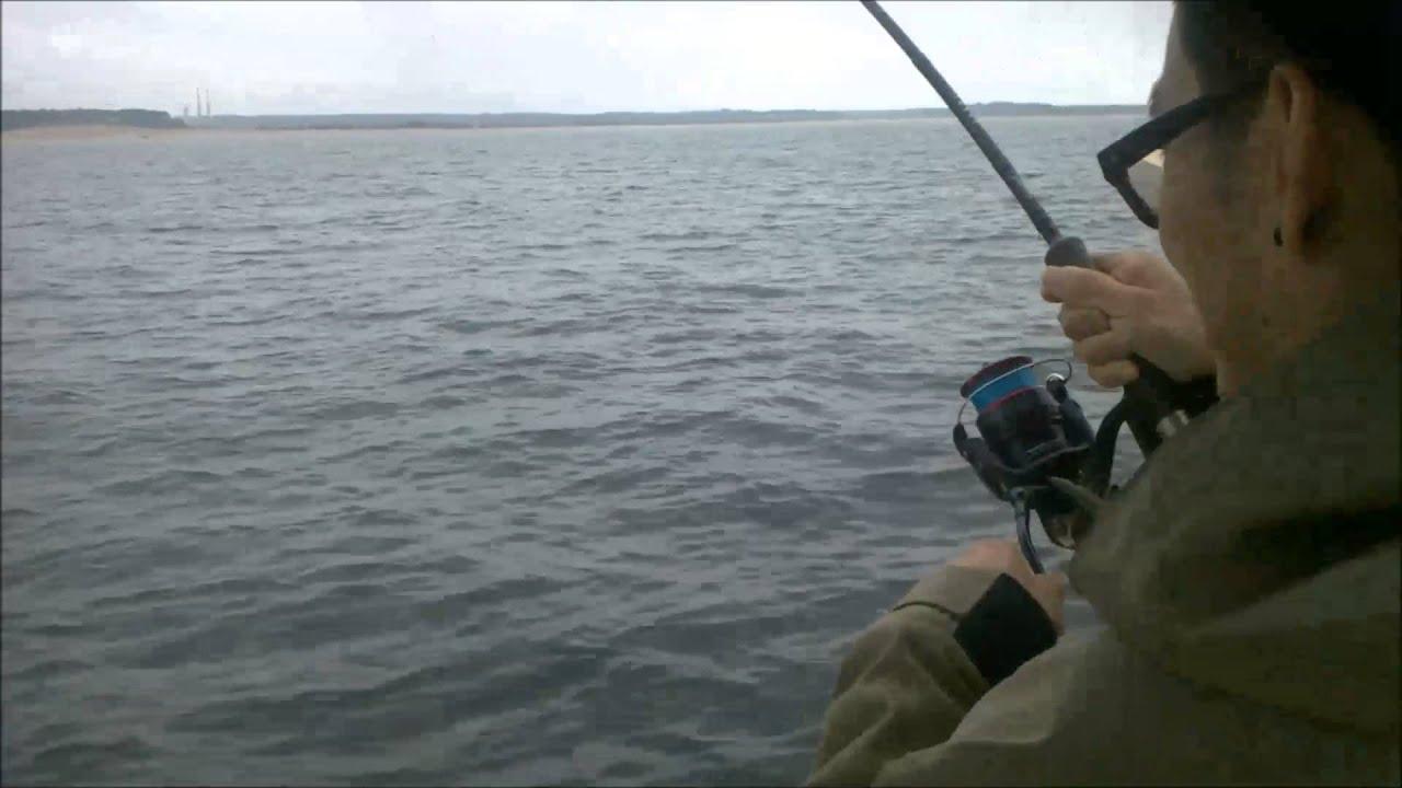 Fishing charter boat port jefferson ny long island sound for Charter fishing boats long island